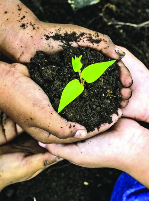 환경을 위하여 힘을 모아 주세요!