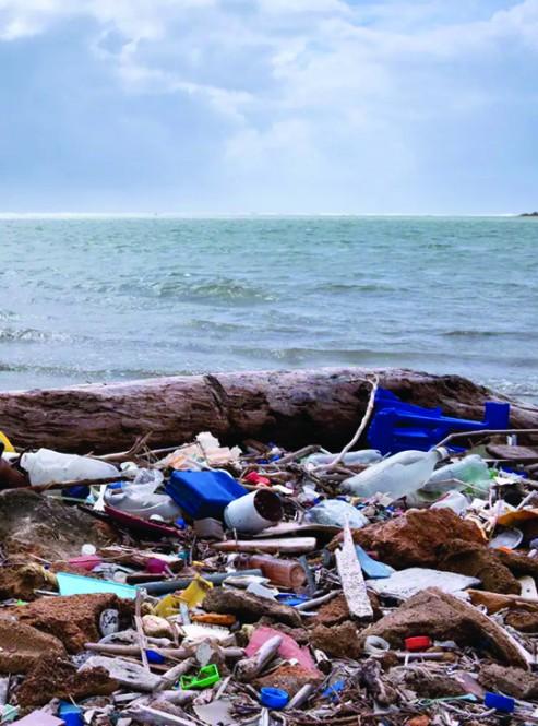 일회용품 쓰레기 문제